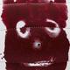 Wilson-Speculations