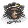 Ariebombarie1