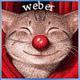 weber515sis