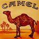 camel10000mg