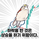 HummingBird-
