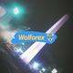 wolforex_mundial