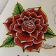 Fallen_Roses