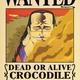 SEC_Crocodile