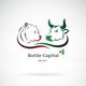 BOTILE_CAPITAL