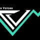 Tradersvoices