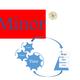 Minor33