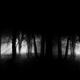 DarkForestCap