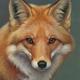 FoxTrader2020