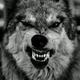 Wolfgan