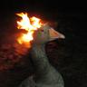 BurningDuckHead
