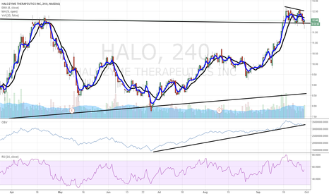 HALO: $HALO bullish flag