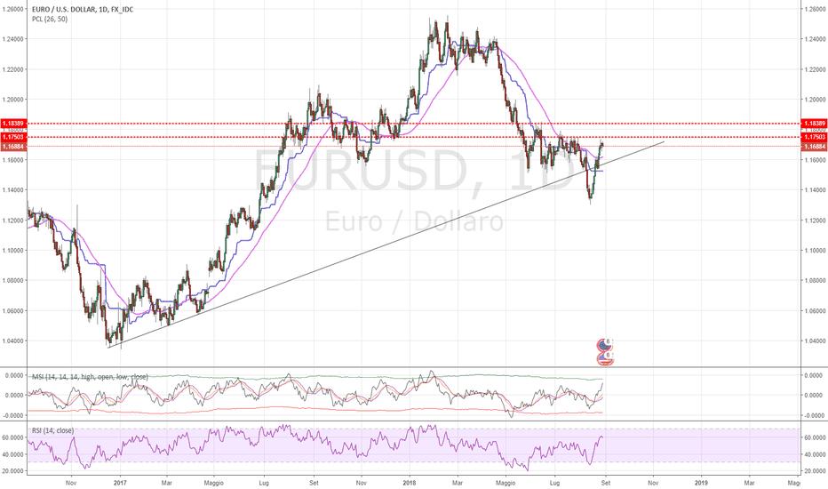 EURUSD: EUR/USD Aggiornamento 30(08/2018!
