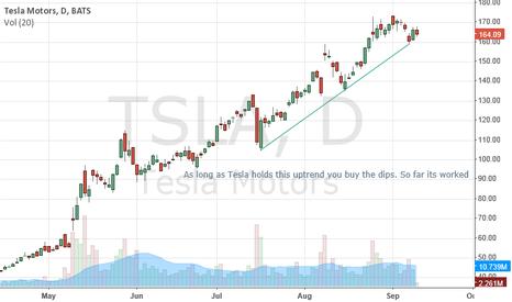 TSLA: Buying the dip