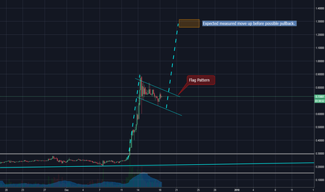 XRPUSD: XRP in a Flag Pattern