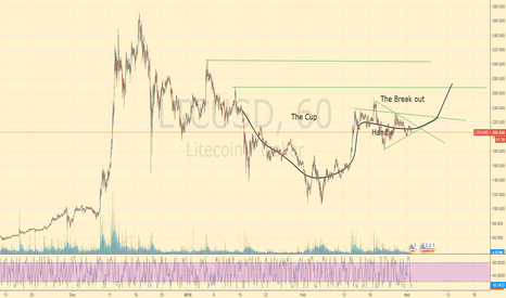 LTCUSD: Litcoin Cup