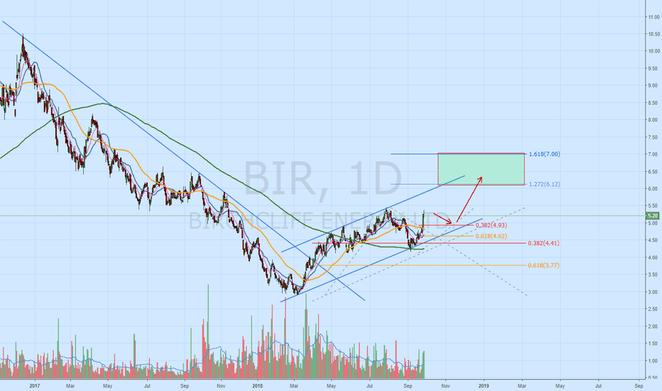 Bir Stock Price And Chart Tsx Bir Tradingview