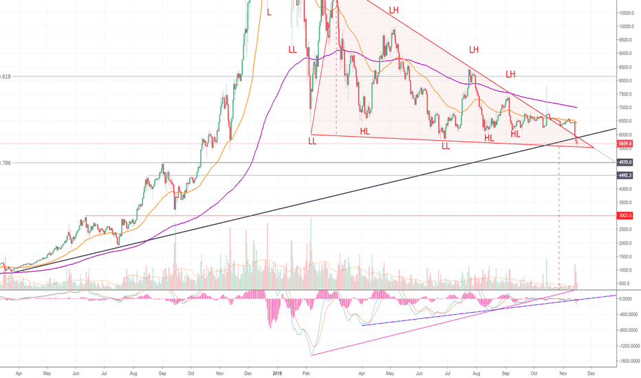 BTCUSD: Important Facts on The State of Bitcoin! Don't Miss This! (BTC)