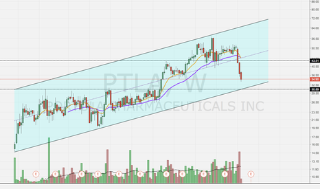 PTLA: Short to Channel Support