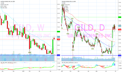 GILD: Basing on support