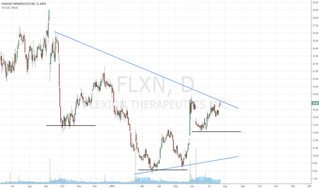 FLXN: Flexing