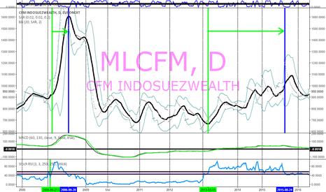 MLCFM: symbole MLCFM - CFM IndoSuez - Banque Monaco