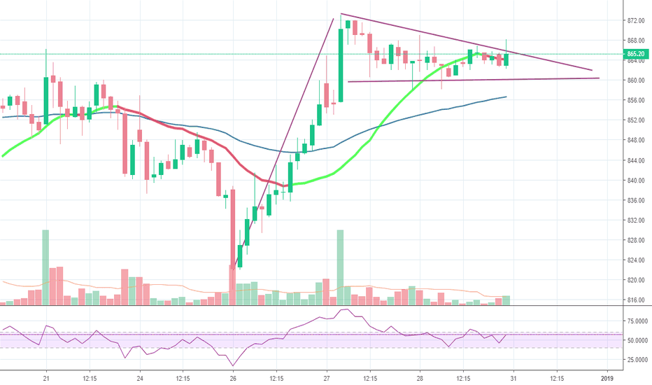 MINDTREE: flag for long