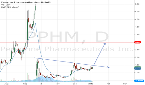 PPHM: Monitor for breakout