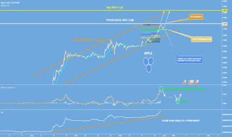 XRPUSD: Ripple - The New Bitcoin - 3$