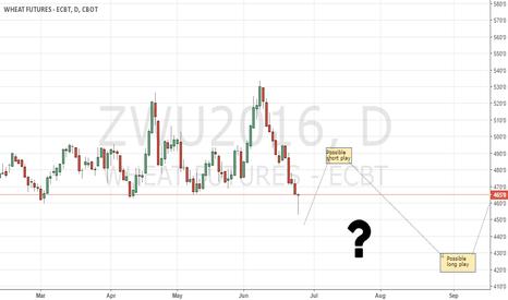 ZWU2016: Wheat CBoT still clueless