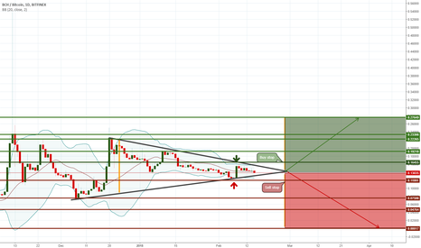 BCHBTC: BTH\BTC, Will go to the moon or crashing down!