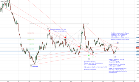 ZC1!: Corn is about to head north dramatically. Here's why.....
