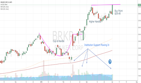 BRKR: Institutions are buying up BRKR
