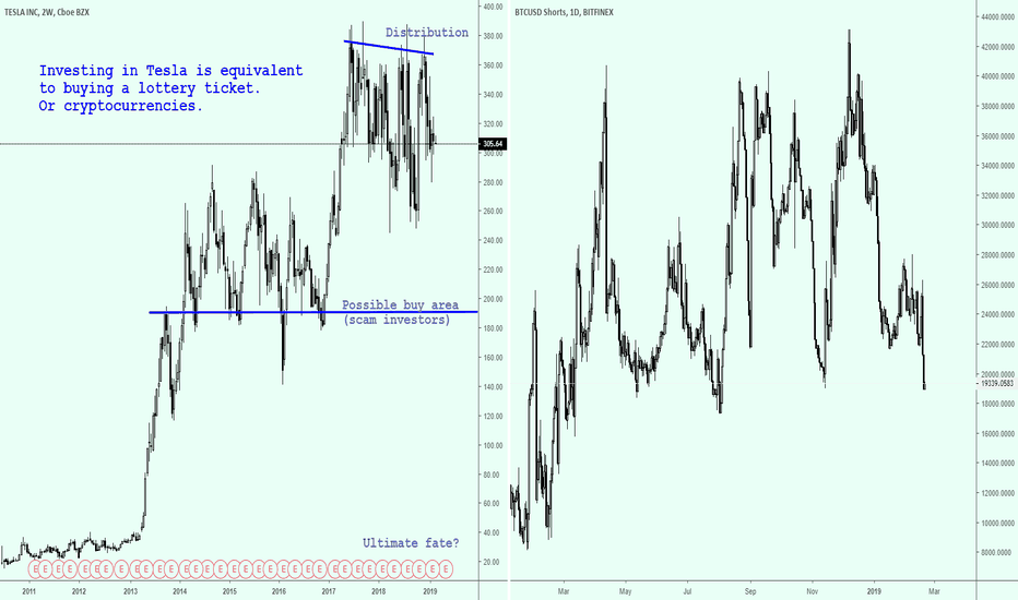 TSLA: The real reason Bitcoin shorts dropped.