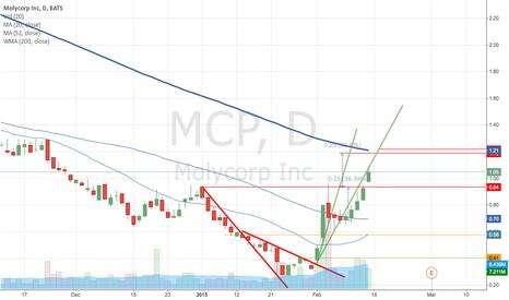 MCP: Bull market