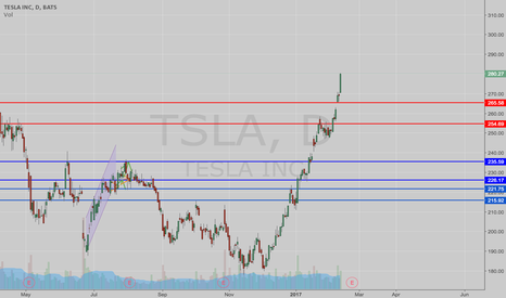 TSLA: Let The Peak Begin