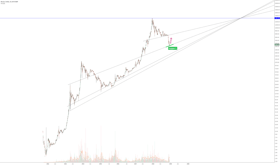 BTCUSD: BTC - food for thought