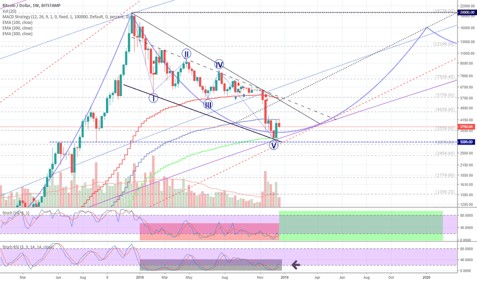 BTCUSD: BTCUSD (1W) LOG: Why is it right to hold Bitcoins? Close up.