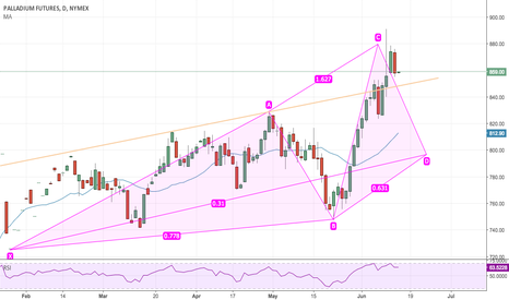PAU2017: Palladium bullish Shark