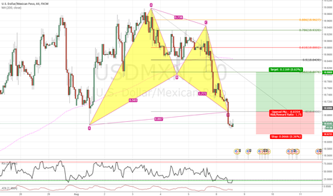 USDMXN: Bullish Bat on USDMXN 1h
