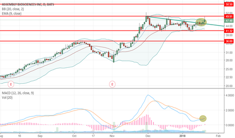 ASMB: Assembly Biosciences, Inc. Swing, Technical Set up Possible 14%