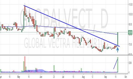 GLOBALVECT: Global Vector Helicorp : Change in long term trend ?