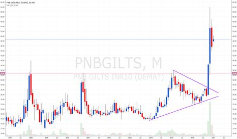 PNBGILTS: PNBGILT