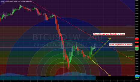 BTCUSD1W: This week's Dilemma