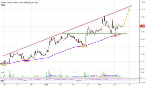 SHIVAAGRO: Swing Trade | Tgt 100 | BestBuy @ 68-72