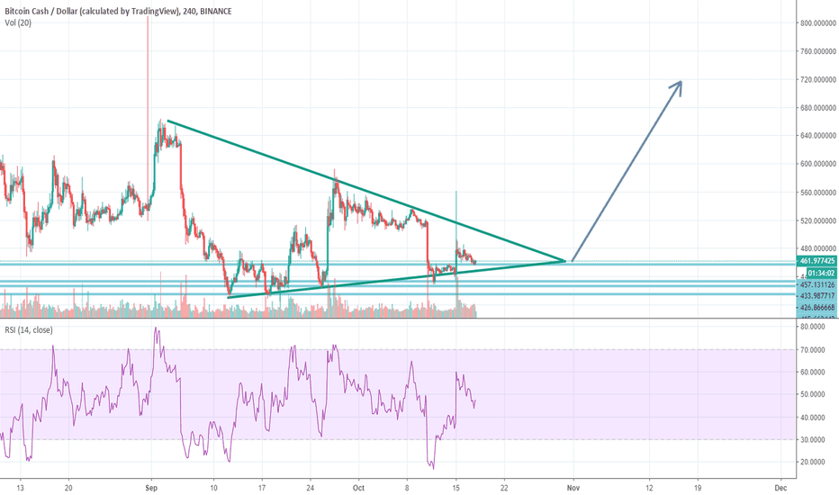BCCUSD: BCH potentially good long profit