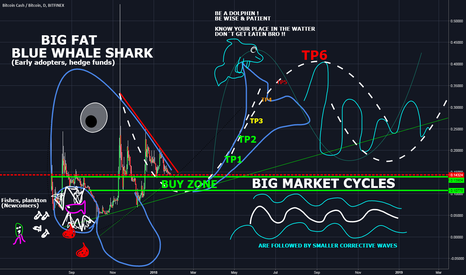 BCHBTC: How to understand the market cycles