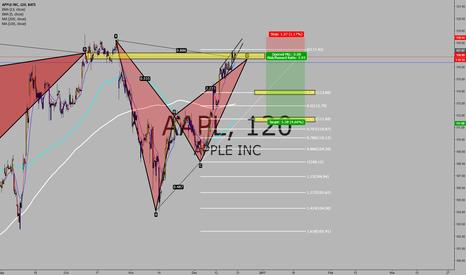 AAPL: Bulls of Wall Street - AAPL