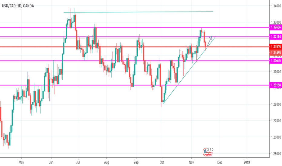USDCAD: The price respecting the trend line