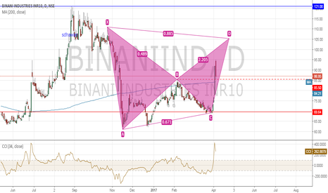 BINANIIND: binani bear bat pattern